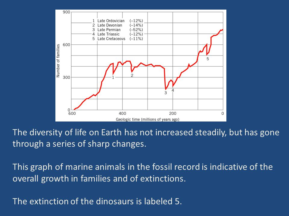 The diversity of life on Earth has not increased steadily, but has gone through a series of sharp changes.