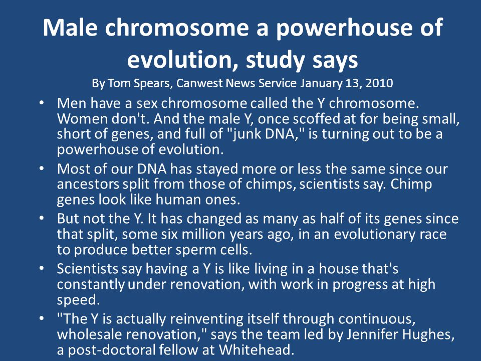 Male chromosome a powerhouse of evolution, study says By Tom Spears, Canwest News Service January 13, 2010