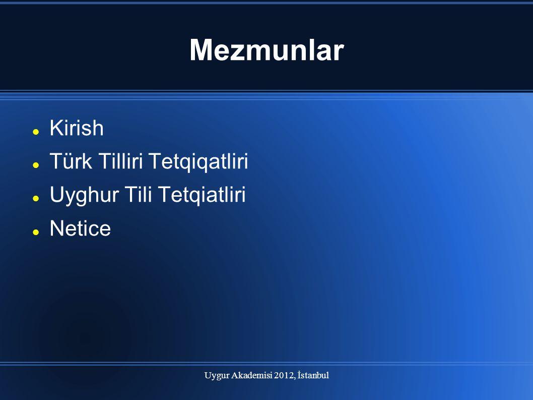 Uygur Akademisi 2012, İstanbul
