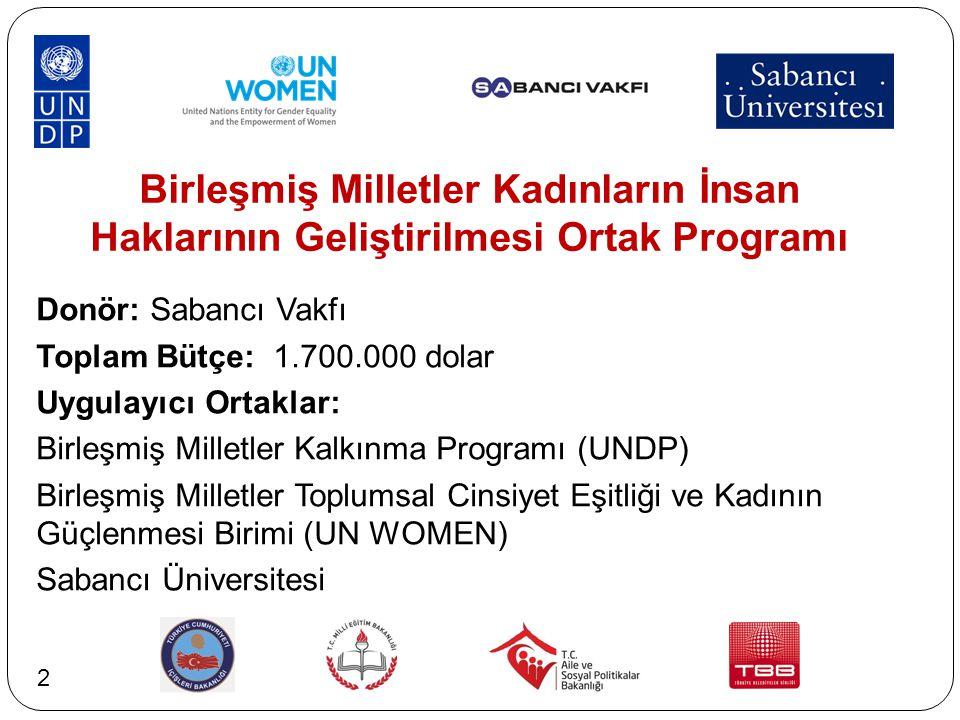 Birleşmiş Milletler Kadınların İnsan Haklarının Geliştirilmesi Ortak Programı