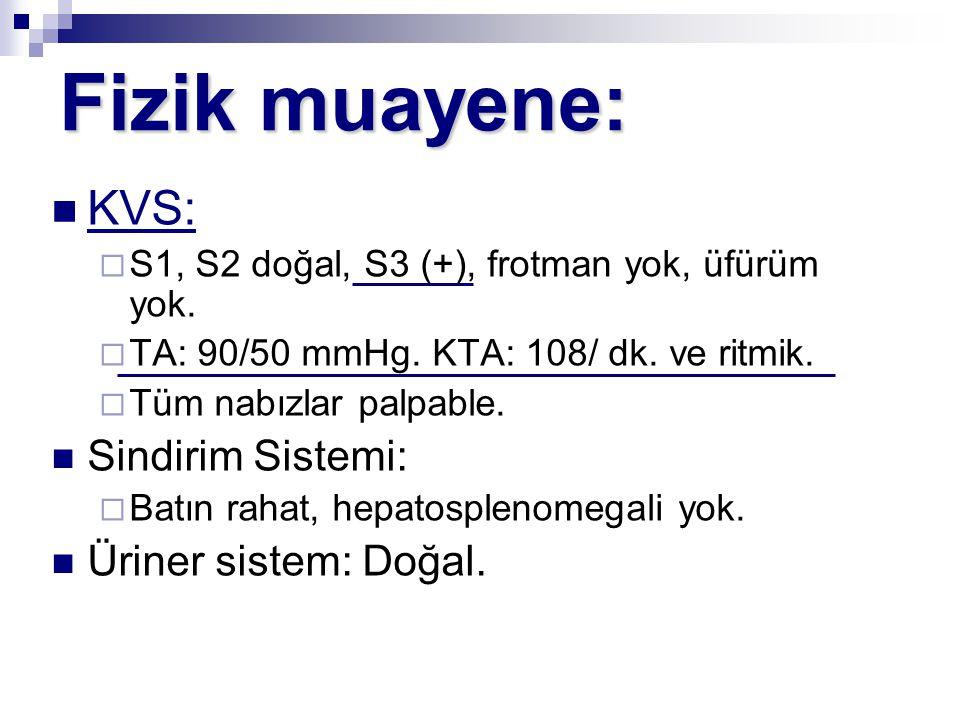 Fizik muayene: KVS: Sindirim Sistemi: Üriner sistem: Doğal.