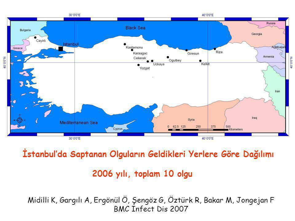 İstanbul'da Saptanan Olguların Geldikleri Yerlere Göre Dağılımı