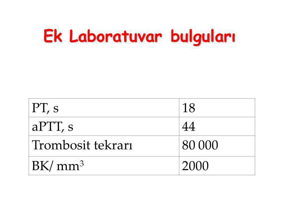 Ek Laboratuvar bulguları