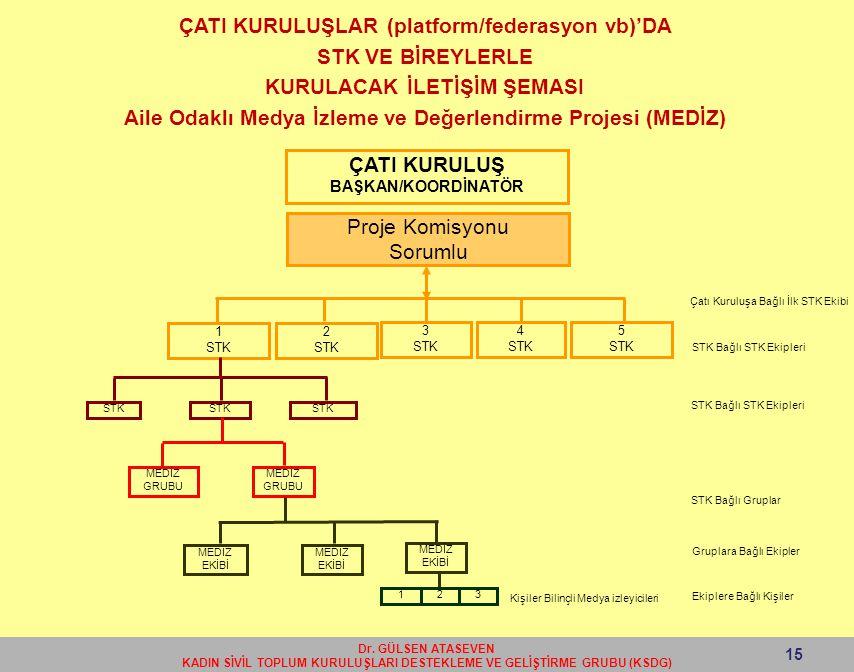 ÇATI KURULUŞLAR (platform/federasyon vb)'DA STK VE BİREYLERLE