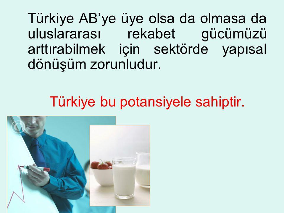 Türkiye bu potansiyele sahiptir.