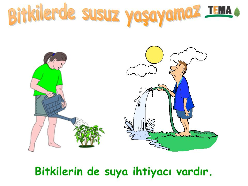Bitkilerde susuz yaşayamaz