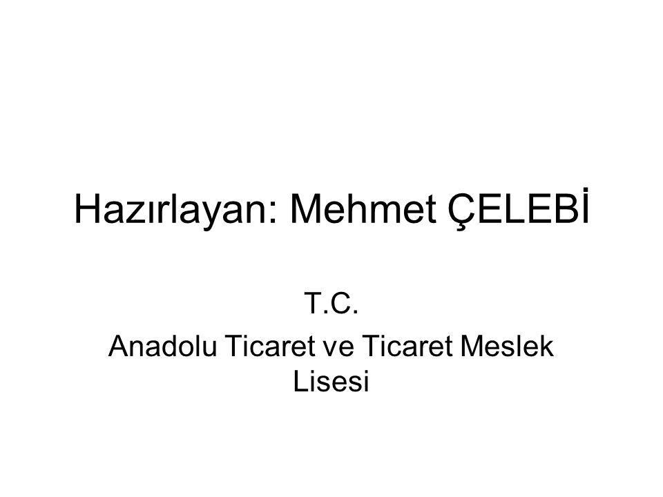 Hazırlayan: Mehmet ÇELEBİ