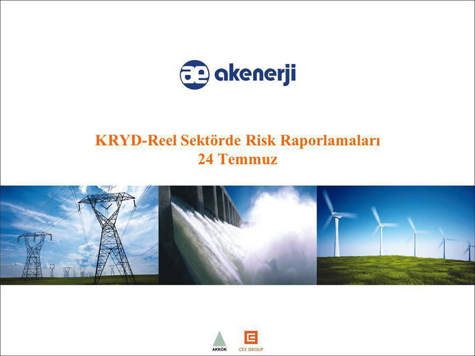 KRYD-Reel Sektörde Risk Raporlamaları 24 Temmuz