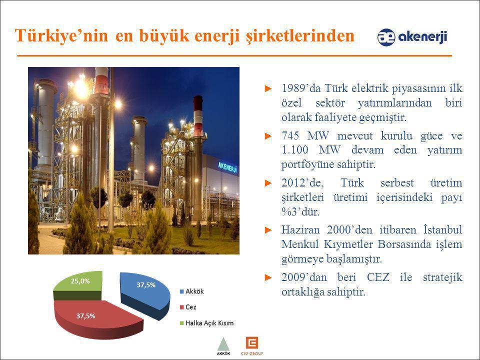 Türkiye'nin en büyük enerji şirketlerinden