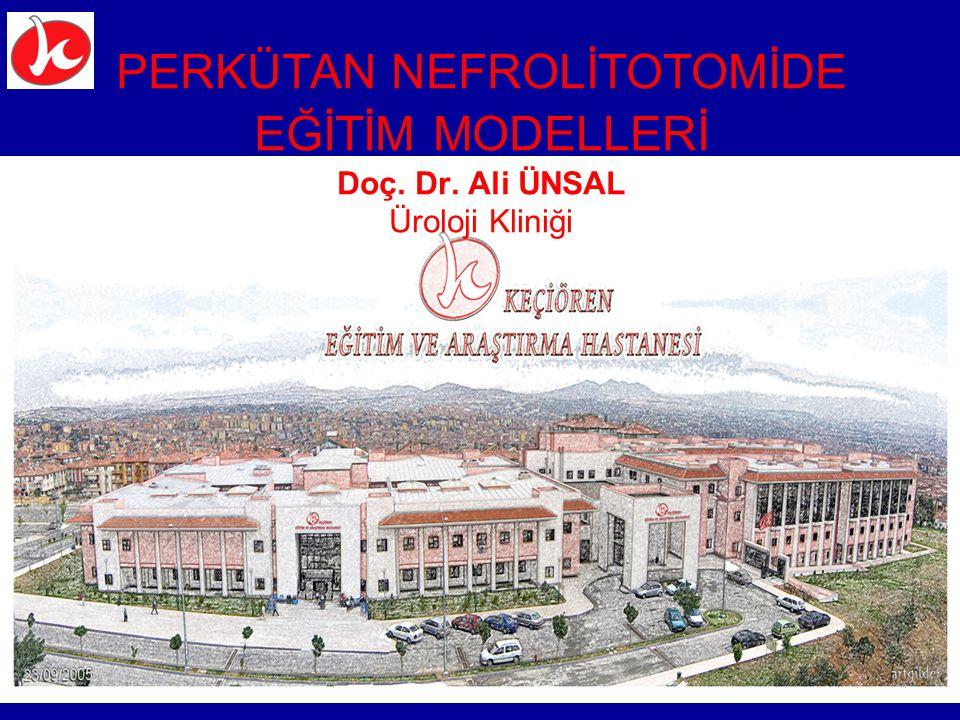 PERKÜTAN NEFROLİTOTOMİDE EĞİTİM MODELLERİ Doç. Dr