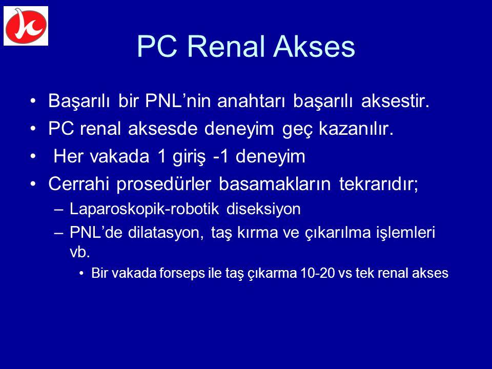 PC Renal Akses Başarılı bir PNL'nin anahtarı başarılı aksestir.