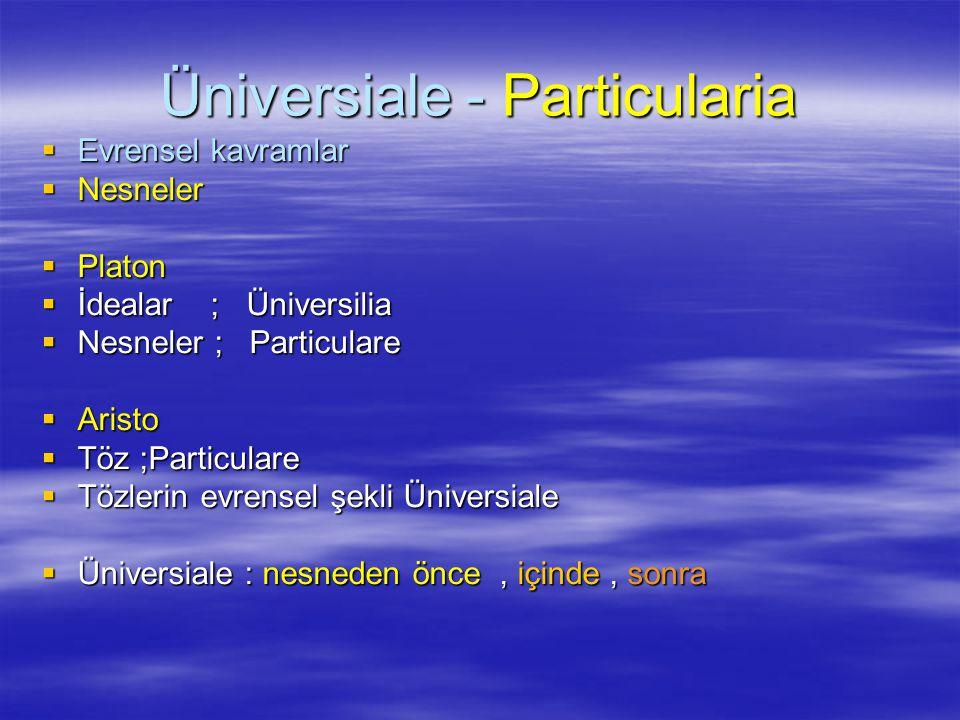 Üniversiale - Particularia