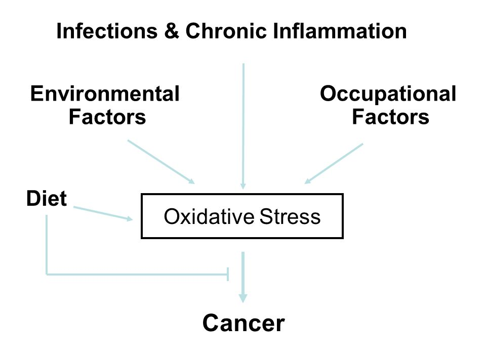 Cancer Infections & Chronic Inflammation Environmental Factors