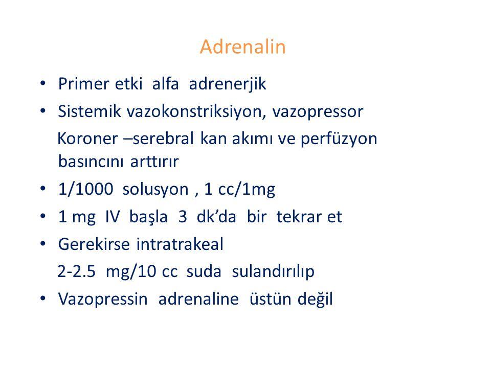 Adrenalin Primer etki alfa adrenerjik