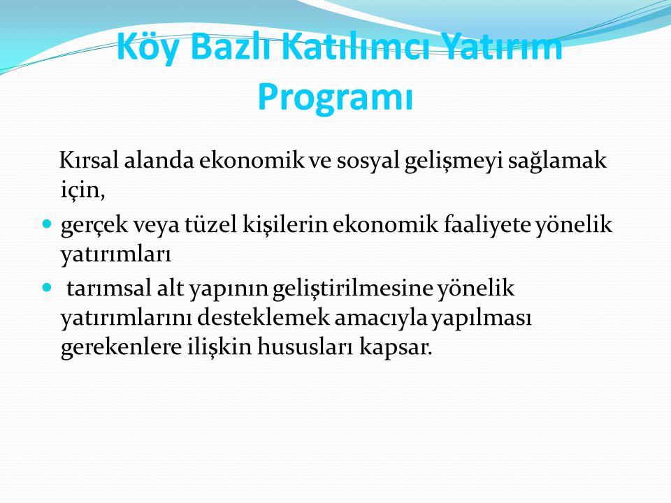 Köy Bazlı Katılımcı Yatırım Programı