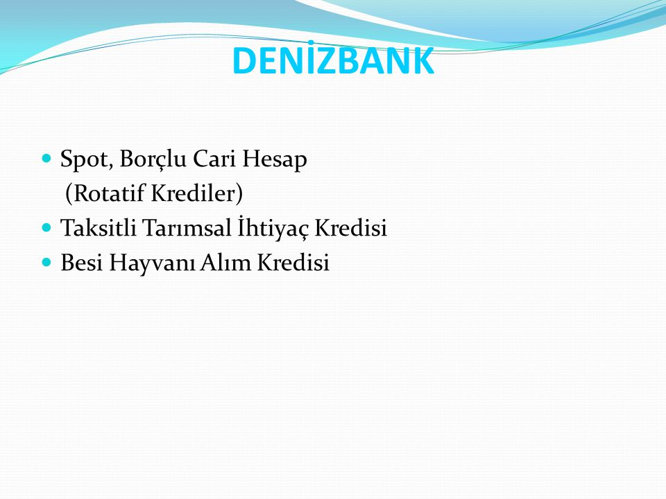 DENİZBANK Spot, Borçlu Cari Hesap (Rotatif Krediler)