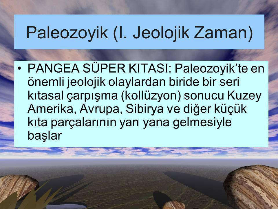 Paleozoyik (I. Jeolojik Zaman)