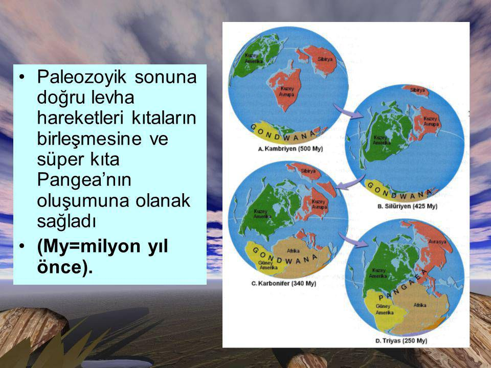 Paleozoyik sonuna doğru levha hareketleri kıtaların birleşmesine ve süper kıta Pangea'nın oluşumuna olanak sağladı