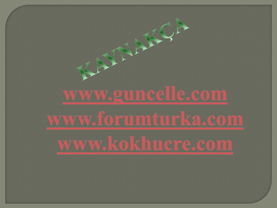 www.guncelle.com www.forumturka.com www.kokhucre.com KAYNAKÇA