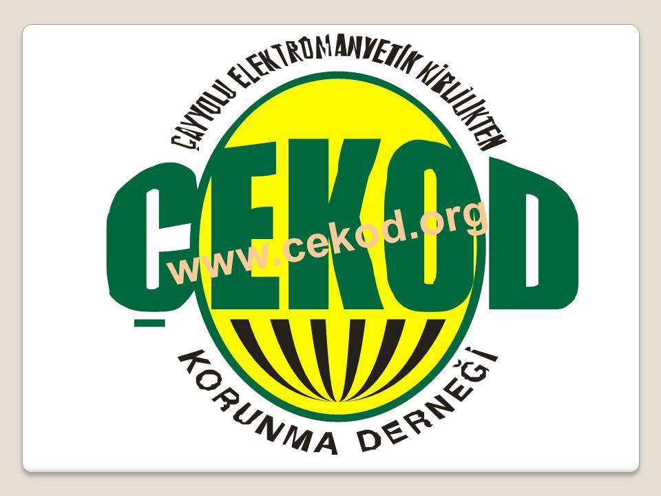 www.cekod.org www.cekod.org