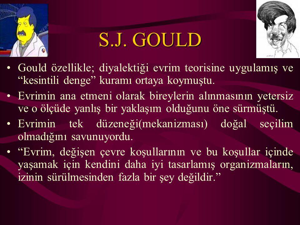 S.J. GOULD Gould özellikle; diyalektiği evrim teorisine uygulamış ve kesintili denge kuramı ortaya koymuştu.