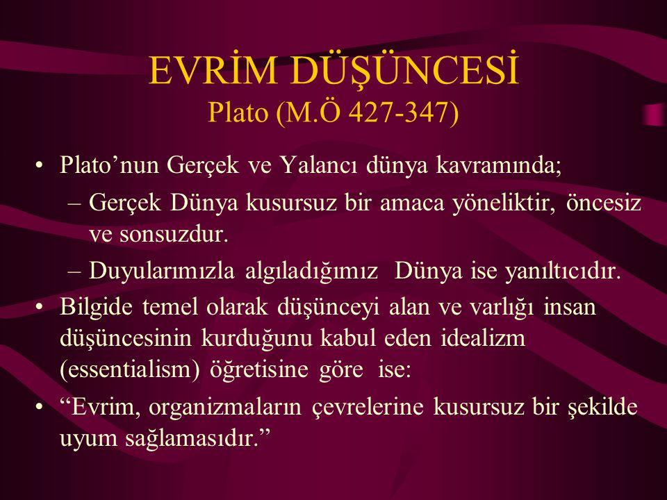 EVRİM DÜŞÜNCESİ Plato (M.Ö 427-347)