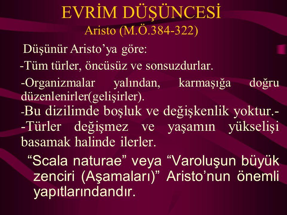 EVRİM DÜŞÜNCESİ Aristo (M.Ö.384-322)