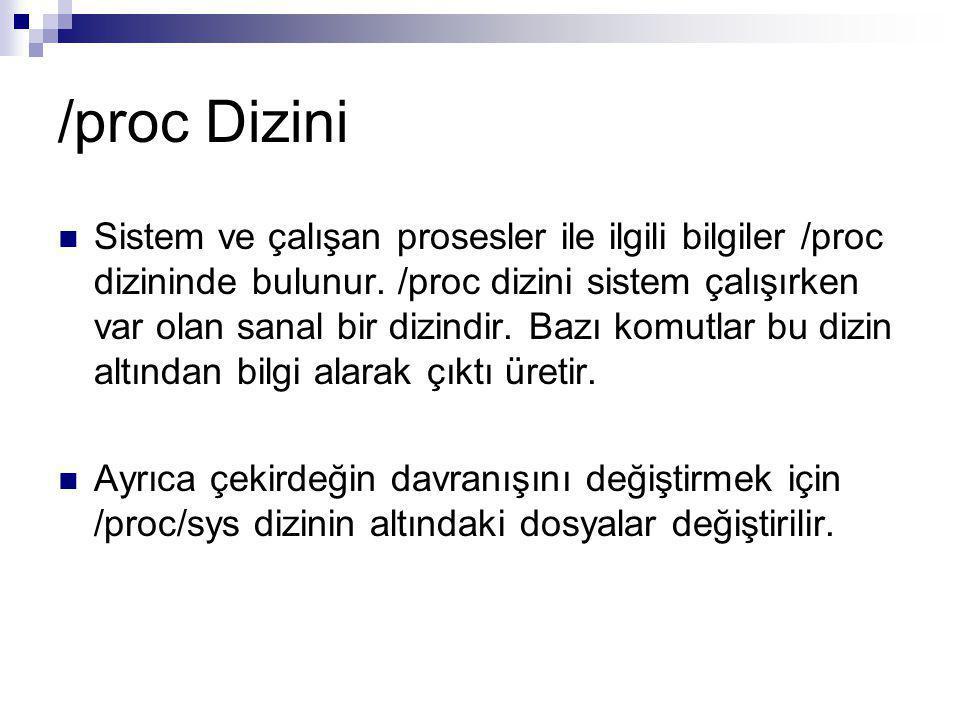 /proc Dizini