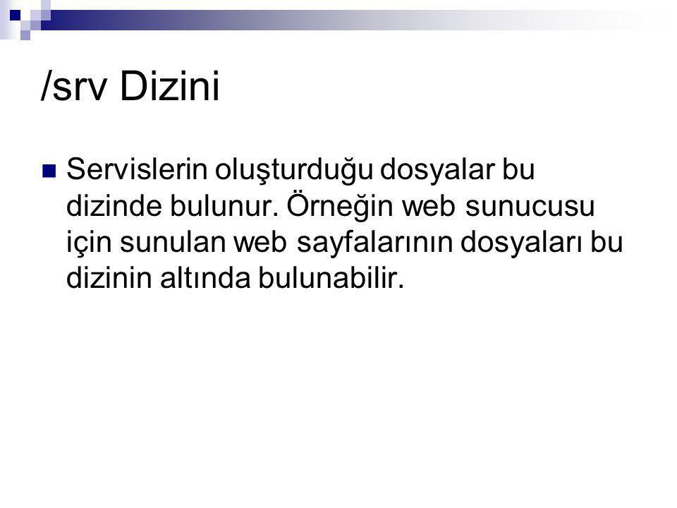 /srv Dizini