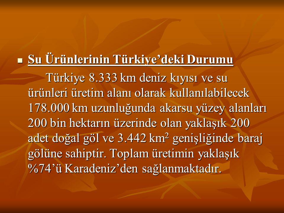 Su Ürünlerinin Türkiye'deki Durumu