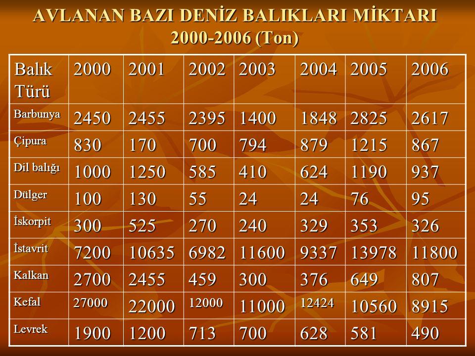 AVLANAN BAZI DENİZ BALIKLARI MİKTARI 2000-2006 (Ton)