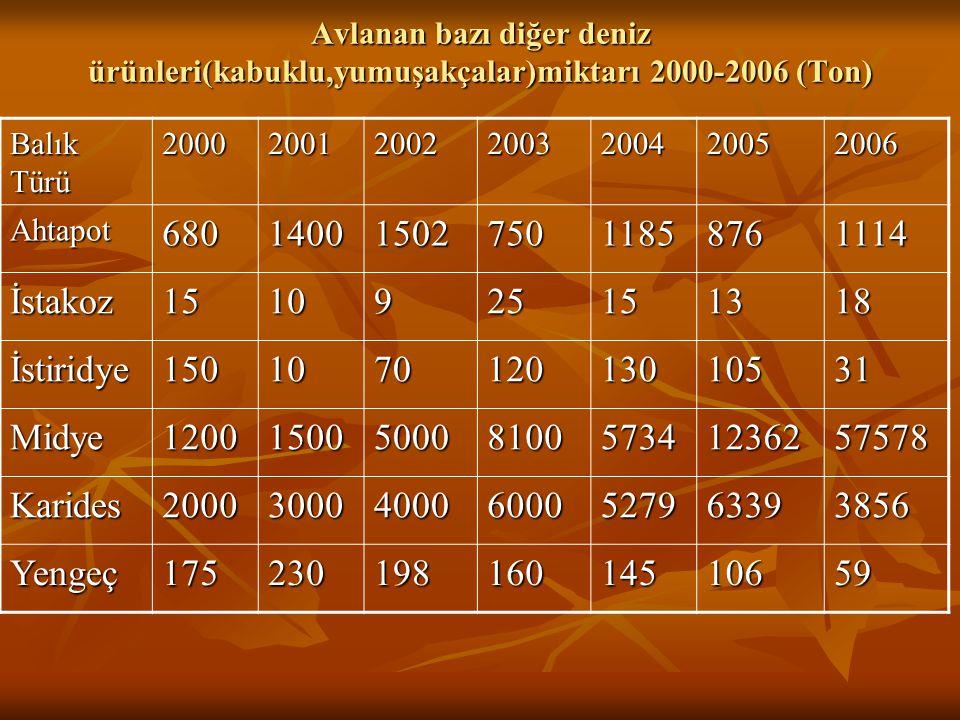 Avlanan bazı diğer deniz ürünleri(kabuklu,yumuşakçalar)miktarı 2000-2006 (Ton)