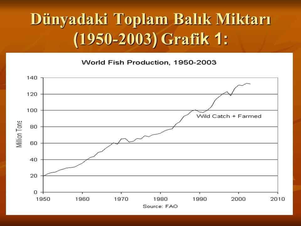 Dünyadaki Toplam Balık Miktarı (1950-2003) Grafik 1: