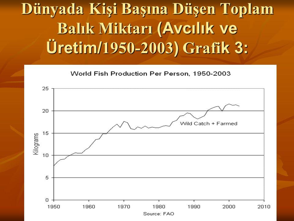 Dünyada Kişi Başına Düşen Toplam Balık Miktarı (Avcılık ve Üretim/1950-2003) Grafik 3: