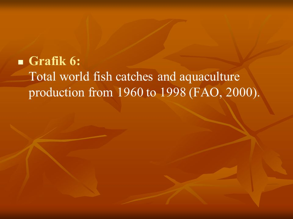Grafik 6: Total world fish catches and aquaculture production from 1960 to 1998 (FAO, 2000).