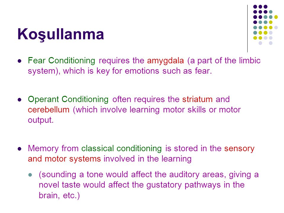 Koşullanma Fear Conditioning requires the amygdala (a part of the limbic system), which is key for emotions such as fear.