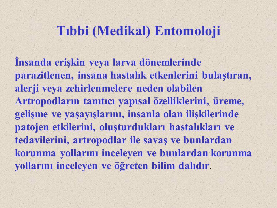 Tıbbi (Medikal) Entomoloji
