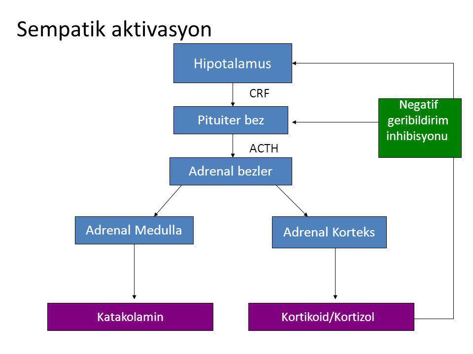 Sempatik aktivasyon Hipotalamus Pituiter bez Adrenal bezler