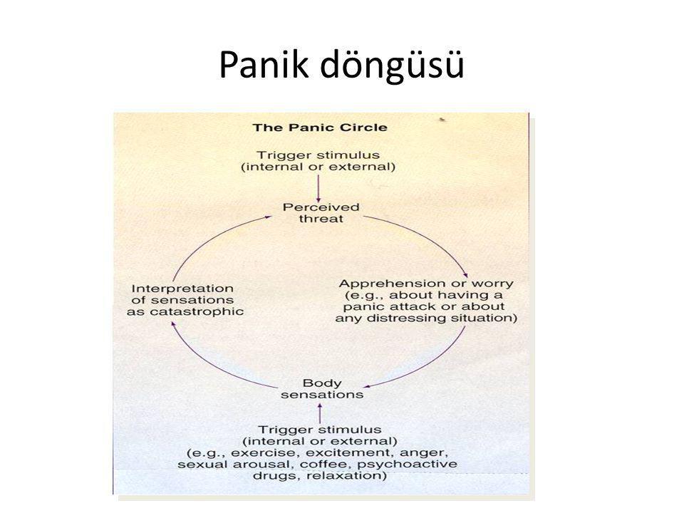 Panik döngüsü