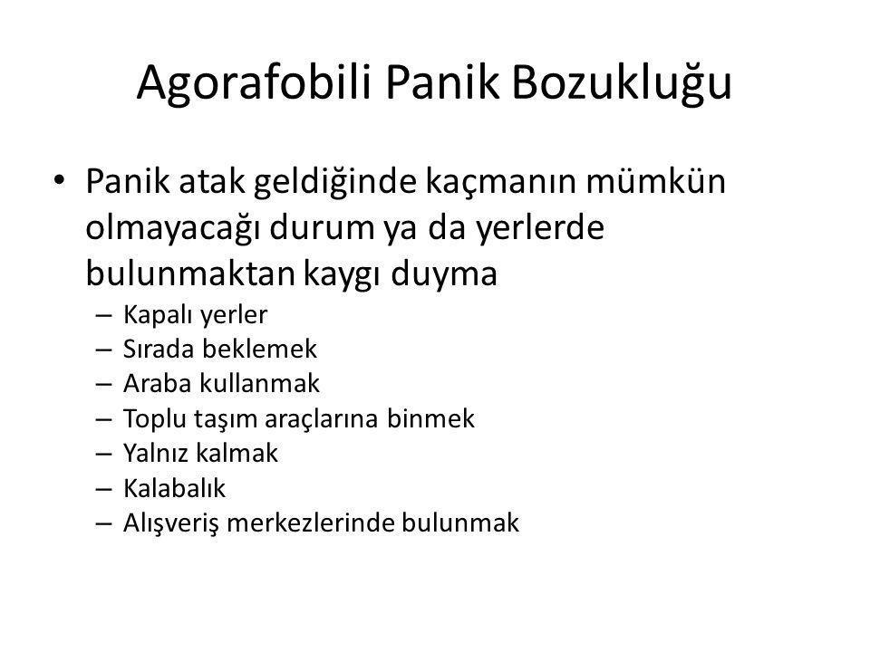 Agorafobili Panik Bozukluğu