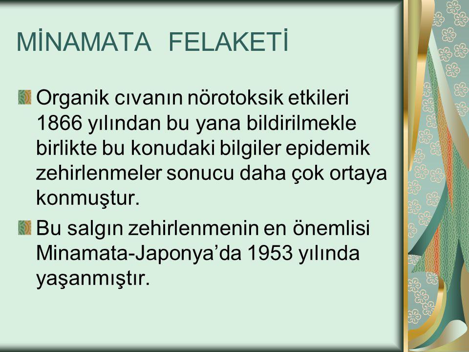 MİNAMATA FELAKETİ