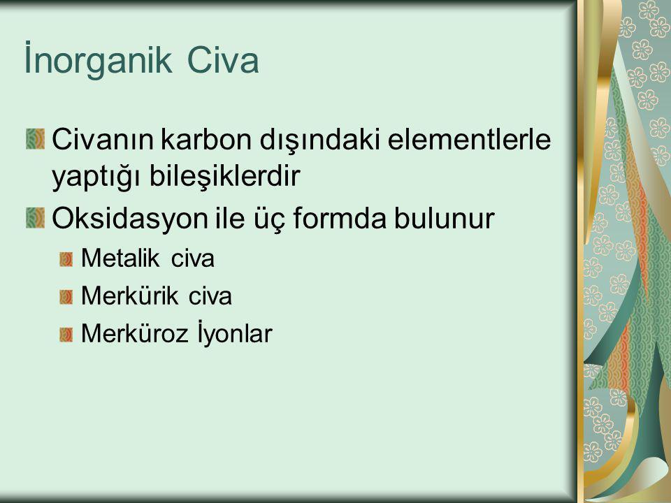 İnorganik Civa Civanın karbon dışındaki elementlerle yaptığı bileşiklerdir. Oksidasyon ile üç formda bulunur.
