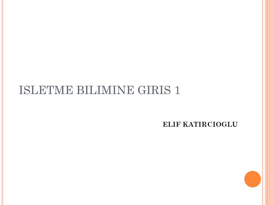 ISLETME BILIMINE GIRIS 1