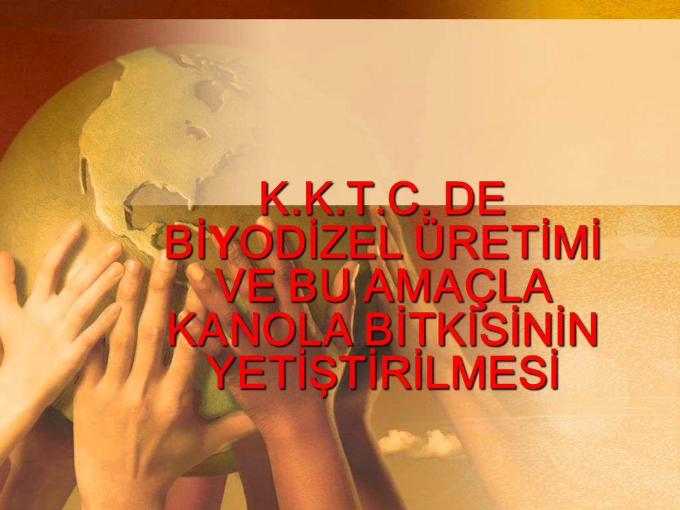 K.K.T.C. DE BİYODİZEL ÜRETİMİ VE BU AMAÇLA KANOLA BİTKİSİNİN YETİŞTİRİLMESİ