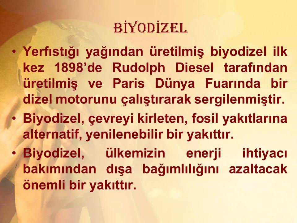 BİYODİZEL