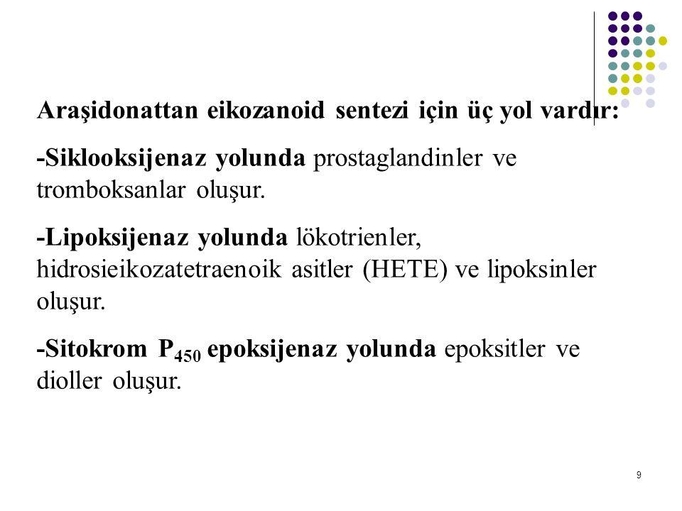 Araşidonattan eikozanoid sentezi için üç yol vardır: