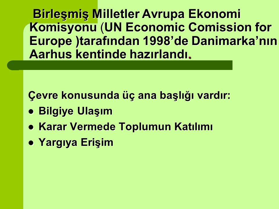 Birleşmiş Milletler Avrupa Ekonomi Komisyonu (UN Economic Comission for Europe )tarafından 1998'de Danimarka'nın Aarhus kentinde hazırlandı.