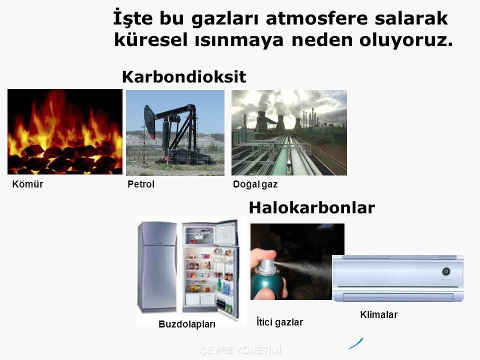 İşte bu gazları atmosfere salarak küresel ısınmaya neden oluyoruz.