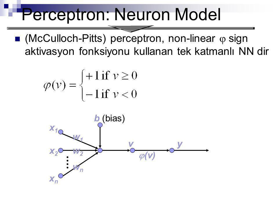 Perceptron: Neuron Model