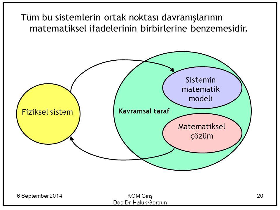 Tüm bu sistemlerin ortak noktası davranışlarının matematiksel ifadelerinin birbirlerine benzemesidir.
